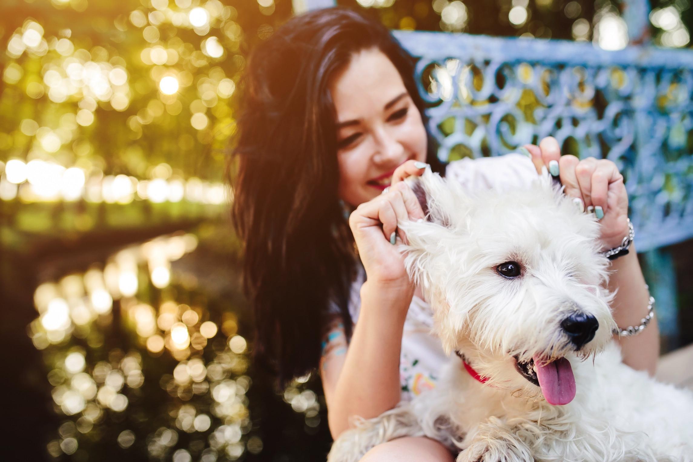 Bewezen: van huisdieren worden we zielsgelukkig