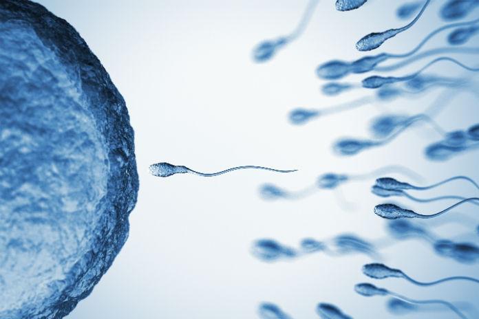 Liesbeth (36) liet haar eicellen invriezen: 'Mijn biologische klok tikt hard'