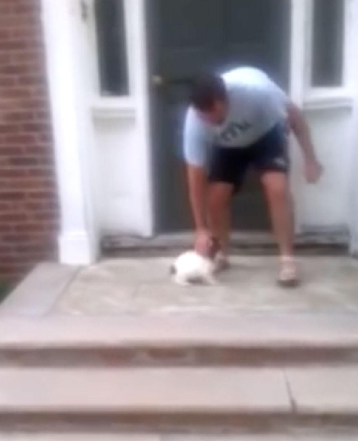 Puppy durft trap niet af, maar…