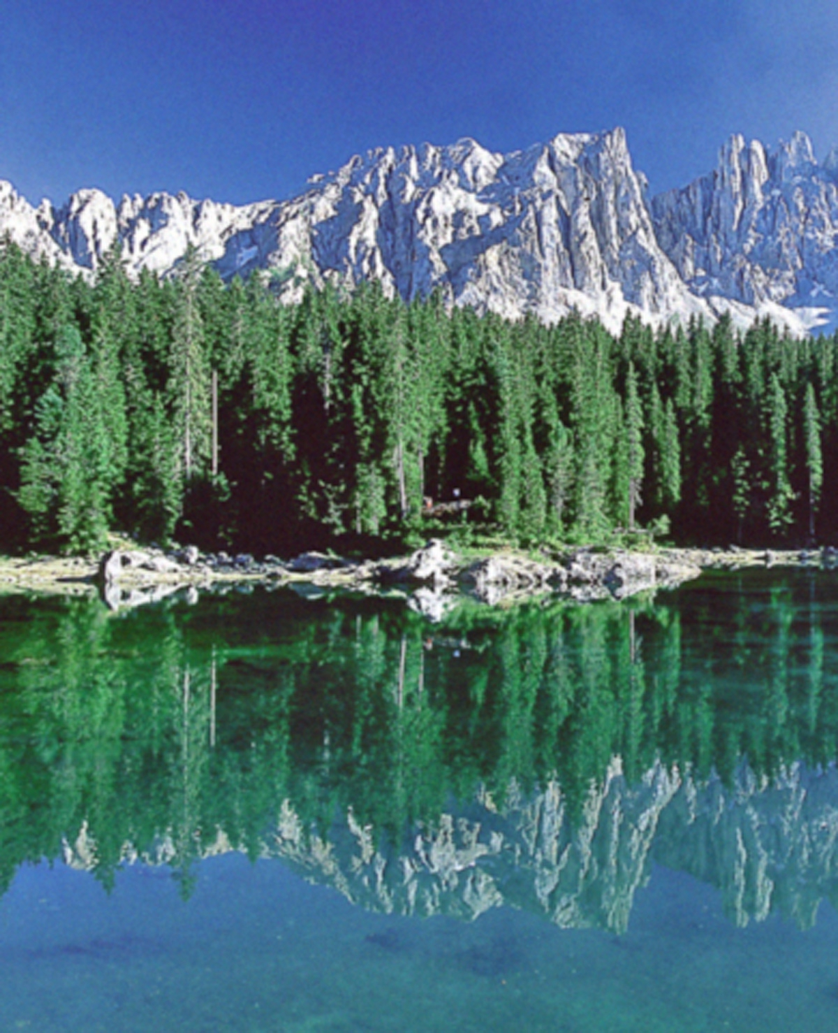8 dagen Zuid-Tirol vanaf €469 p.p.
