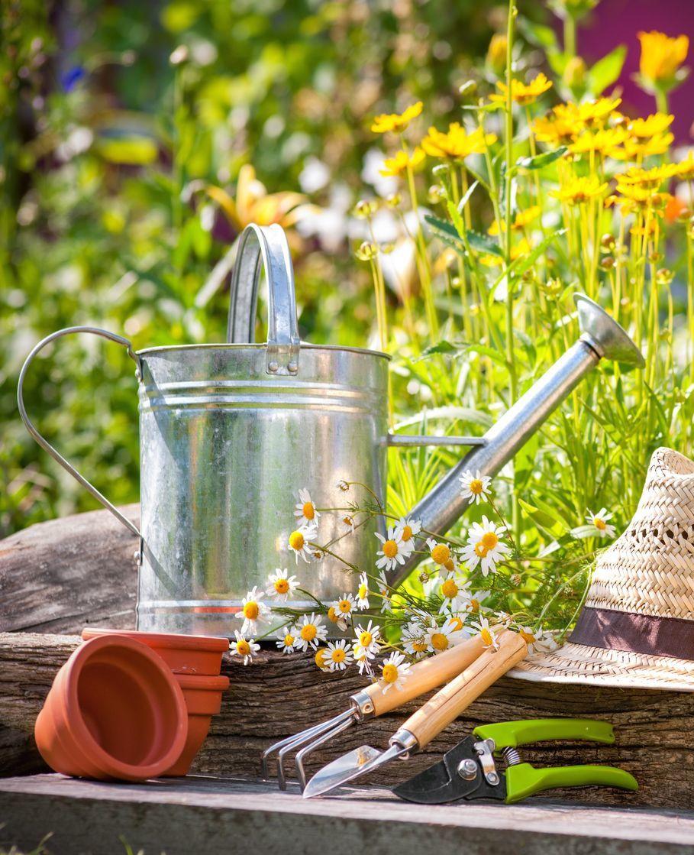 Tips voor een opgeruimde tuin