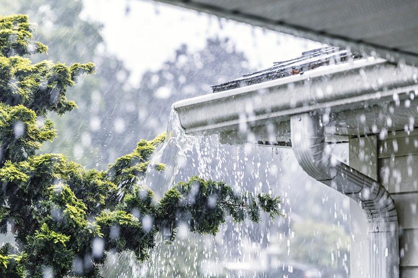 Regen en zware windstoten: zólang houdt zomerstorm Francis nog aan