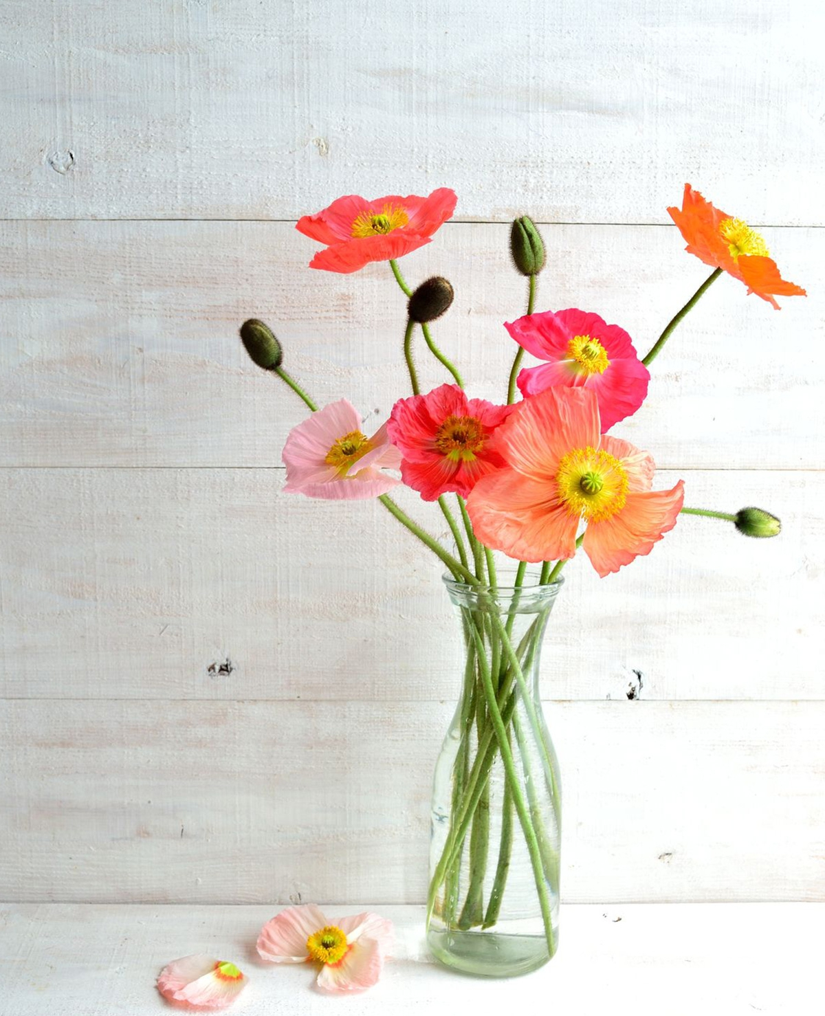 Zo blijven je bloemen langer mooi