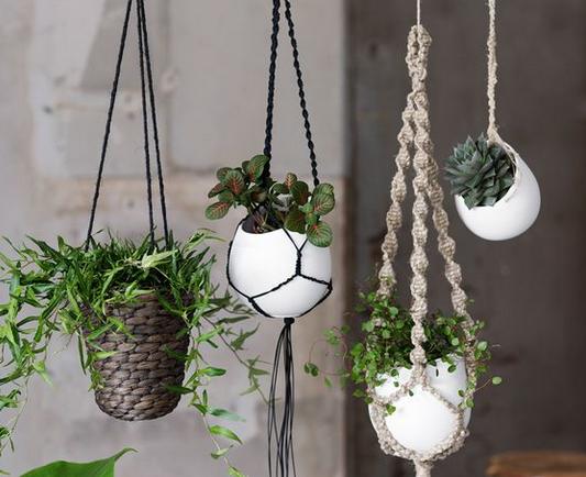 Pinspiration: Hangplanten voor een speels interieur