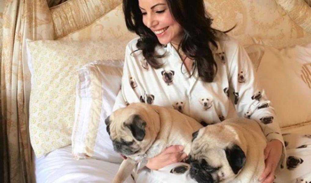 In deze pyjama draag je jouw huisdier altijd bij je