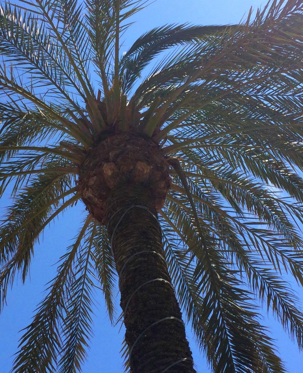 Denise blogt: Tips voor trips in de herfstvakantie