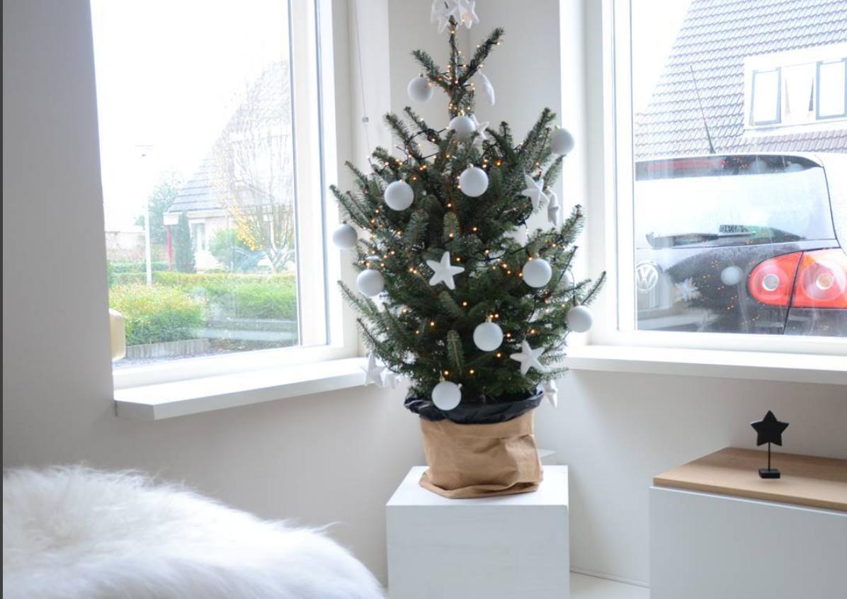 Zien: dít zijn de kerstbomen van de Flair-lezeressen