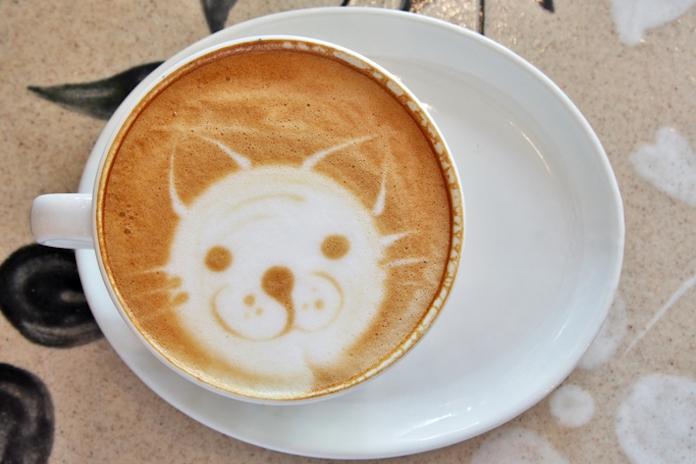 Fijne Internationale Kattendag! Dit zijn de 10 leukste poezencafés door heel Nederland