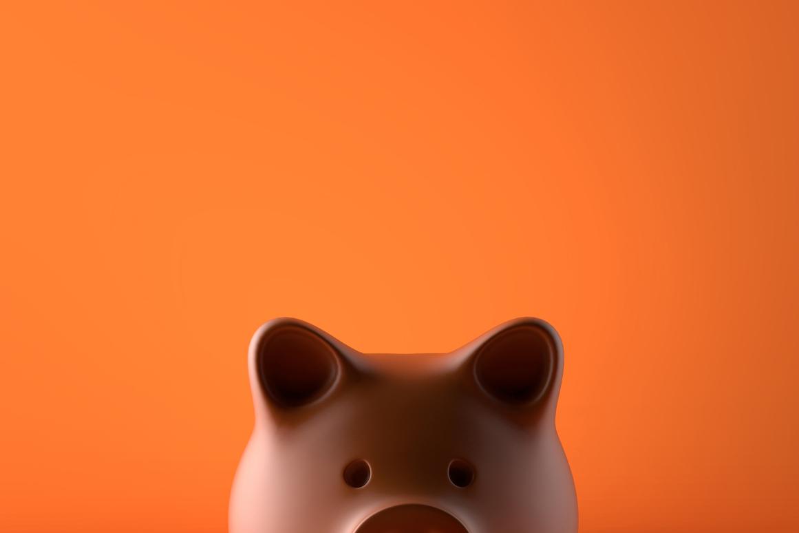 Huishoudboekje van Merel (23): 'Als ik om me heen kijk, besef ik dat we het financieel hartstikke goed hebben'