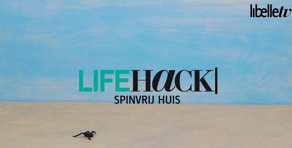Life hack: zo krijg je een spinvrij huis!