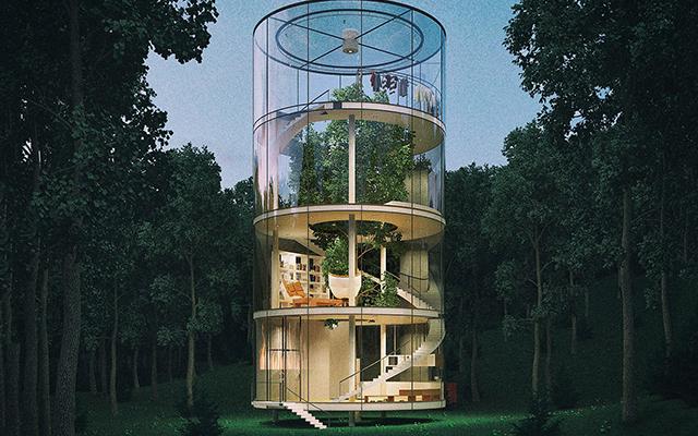 Wauw: dit prachtige, glazen huis werd rondom een boom gebouwd