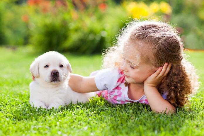 Dit zijn de beste hondenrassen voor huishoudens met kids