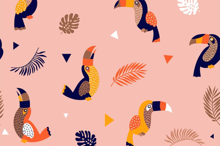 Wat een giller: internet ligt dubbel om vermomde 'tropische' vogel