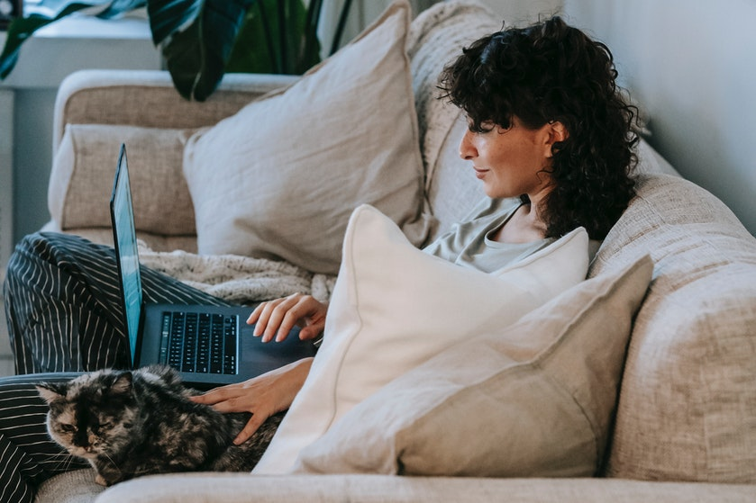 Je kat die je online vergadering verstoort? Dit is waarom je huisdier dat doet